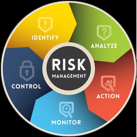 risk managment information chart