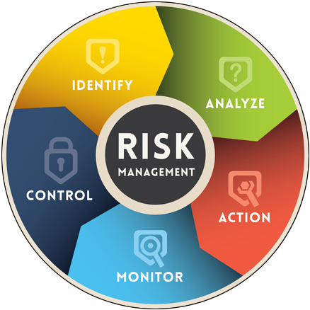 risk managment information chart