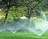 Amended City of Dunedin Watering Restrictions