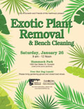 Exotic Plant Removal