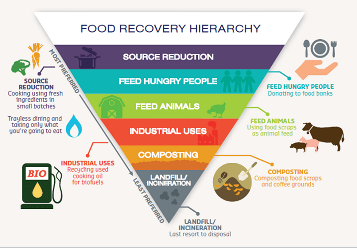 Food Waste Management Hierarchy