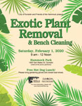 Exotic-Plant-Removal-February-2020